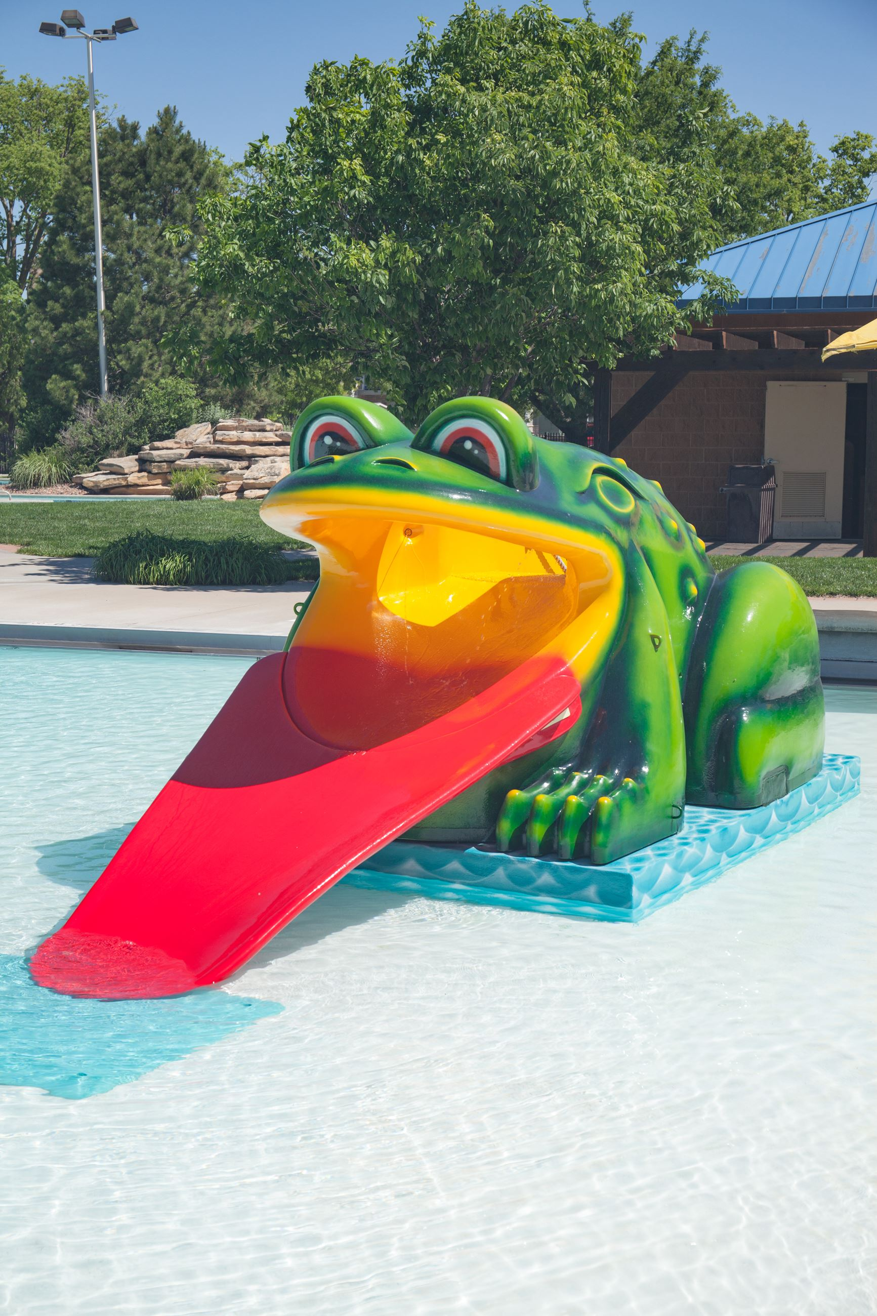 Hays Aquatic Park frog slide