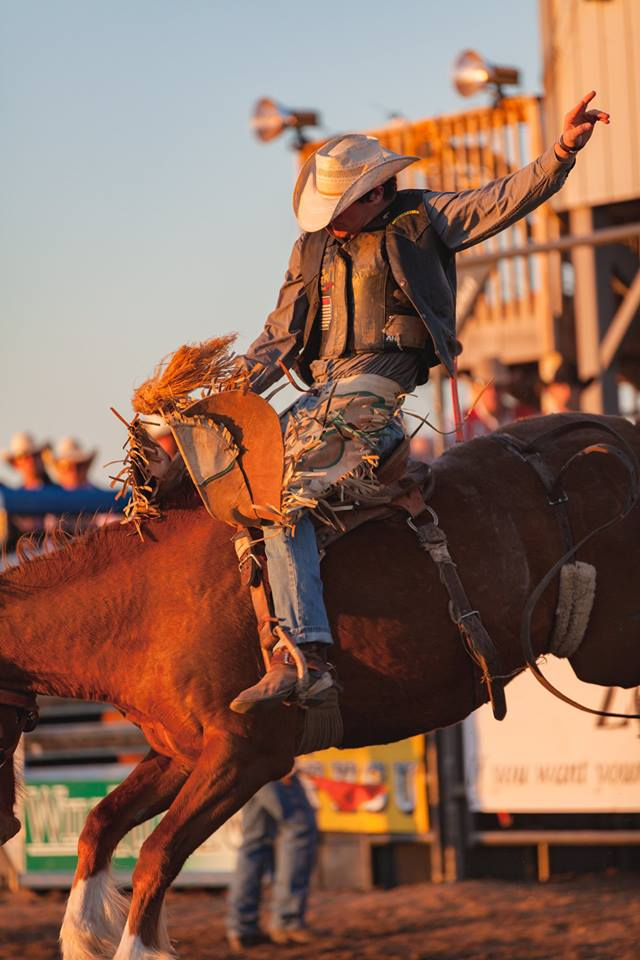 Bucking Horse at Rodeo Opens in new window